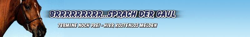 Header Titelbild Michaels Webauftritt Veranstaltungen Leipzig Sachsen