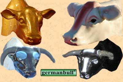 Bullriding from Cowboyhat - die Agentur für den Wilden Westen